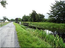 N4125 : Grand Canal in Ballycommon, Co. Offaly by JP