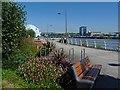 ST3188 : Kutaisi Walk, Newport by Robin Drayton
