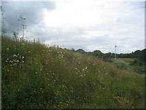 SE2853 : Wild flower bank and wind turbine by Jonathan Thacker