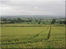 C3304 : Swilly Townland by Richard Webb