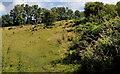 J3370 : Empty field, the Lagan Meadows, Belfast by Albert Bridge