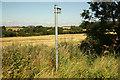 SK7458 : Footpath to Caunton by Richard Croft