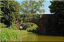 SS9712 : Tidcombe Bridge on the Grand Western Canal by Roger A Smith