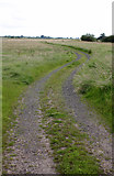 SK8166 : Track onto Smithy Marsh  by Alan Murray-Rust