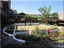 TA0831 : Welcome to Newland Avenue Allotments by Ian S