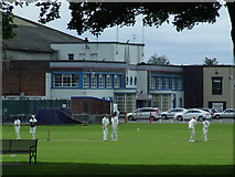 NT2273 : Cricket match in Roseburn Park by Thomas Nugent