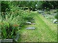 TQ2471 : St Mary's Churchyard, Wimbledon by Marathon