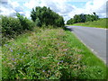 SK9221 : Road verge near North Witham by Marathon