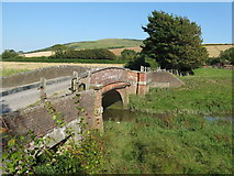 TQ5203 : Long Bridge over the Cuckmere River by Dave Spicer