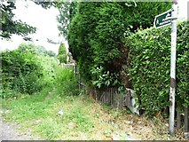 SE4111 : Rather overgrown public footpath, Brierley by Christine Johnstone