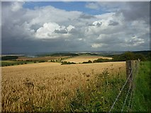 SU5482 : View north-east from Lowbury Hill by Fly