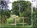 TM3679 : Footpath to the Playing Field & Lodge Lane by Adrian Cable
