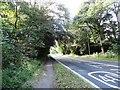 NZ2237 : A690 at Brandon by Robert Graham