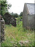 G5119 : Overgrown farm buildings by Richard Webb