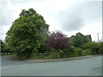SJ3384 : Mid summer 2012 at Port Sunlight (XIII) by Basher Eyre