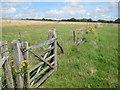 TQ3711 : Gate near Mount Harry by Oast House Archive