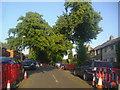 SP7558 : Queen Eleanor Road, Northampton by David Howard