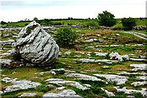 M2300 : The Burren - R480 - Burren Landscape near Poulnabrone Dolmen by Joseph Mischyshyn