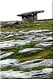 M2300 : The Burren -R480 - Poulnabrone Dolmen by Joseph Mischyshyn