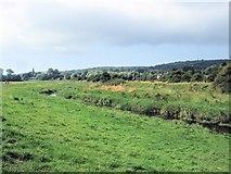 TQ5203 : River Cuckmere near Long Bridge by Paul Gillett