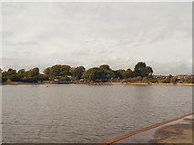TQ6200 : Crumbles Pond, Princes Park, Eastbourne by David Dixon