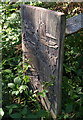 SX9280 : Carved bench end near Mamhead obelisk by Derek Harper