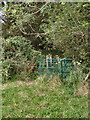SS8582 : Kissing gate on footpath to the south of Cefn Cribwr by eswales