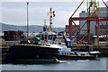 J3675 : Tug 'Smit Tiger' at Belfast by Rossographer