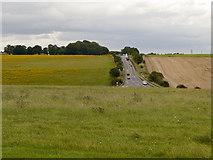 SU1242 : Stonehenge Bottom by David Dixon
