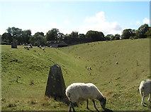 SU1070 : Avebury by Martin Brown