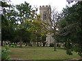TL2344 : Church of St Mary Magdalene, Dunton by JThomas