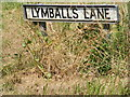 TM4171 : Lymballs Lane sign by Adrian Cable