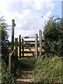 TM3976 : Swan Lane footpath to the A144 Saxons Way by Adrian Cable