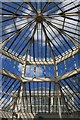 TQ1876 : Roof of the Temperate House, Kew by David Lally