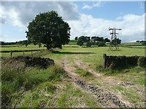 SE0421 : Sowerby Bridge FP132 looking west by Humphrey Bolton
