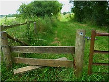 TQ0524 : The Wey-South Path south of Wisborough Green by Shazz