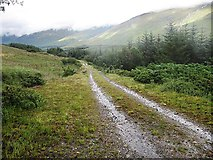 NM6433 : Forestry track, Glen Forsa, Mull by wrobison