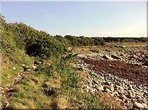SV8707 : Path around St Warna's Cove by Andrew Abbott