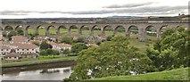 NT9953 : Royal Border bridge, Berwick on Tweed by Chris Morgan