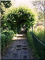 ST5772 : Clifton Hill Area - BS8 by David Hallam-Jones
