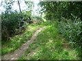 TL1781 : Entrance to Archer's Wood by Marathon
