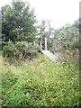 NO5697 : Access to fisherman's footbridge by Stanley Howe