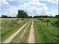 TL7589 : Hockwold Heath by Keith Evans