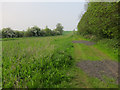 TL3261 : Footpath towards Knapwell by Hugh Venables
