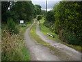 NJ4616 : An access lane in Milltown of Kildrummy by Stanley Howe