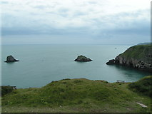 SX9456 : At Berry Head, looking south by Rob Purvis