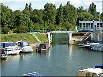 TQ1667 : Marina entrance, Thames Ditton by Robin Webster