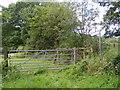 SO9479 : Shut Mill Lane Path by Gordon Griffiths