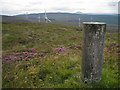 NG3649 : Summit trig point by Richard Dorrell