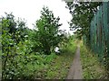 SK3871 : Path along the River Rother / Chesterfield Canal by Christine Johnstone